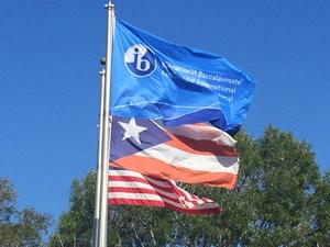 Banderas2web.jpg