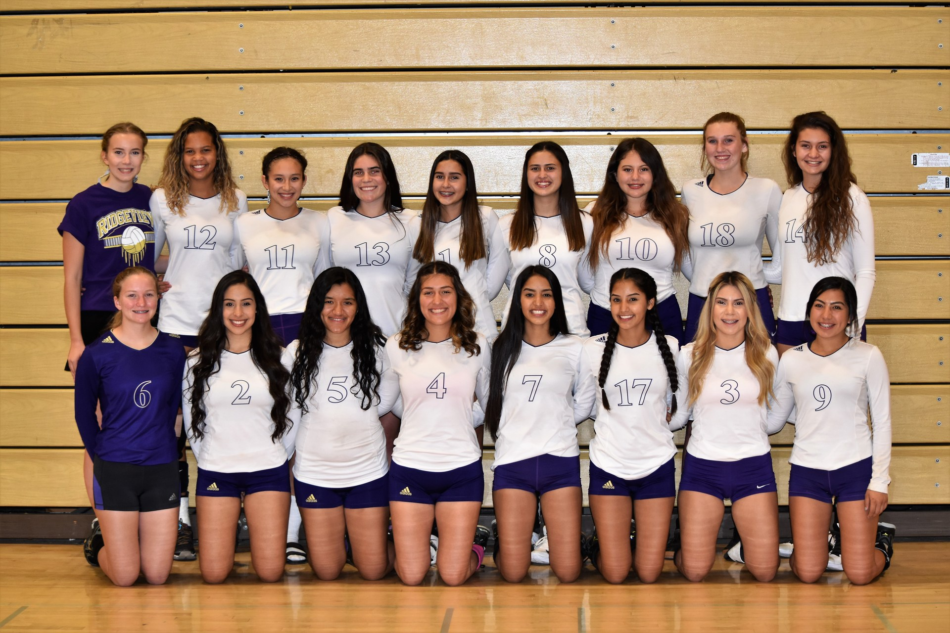 FS Volleyball Team