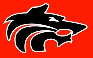 Black on Red Wolf Head Logo