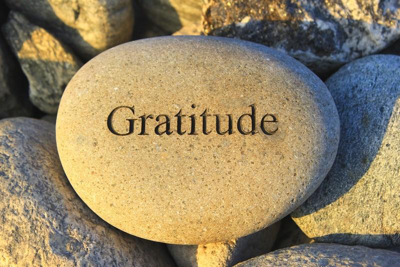 CELEBRATING GRATITUDE 12/8 Thumbnail Image