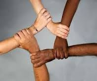 Diversity arms image