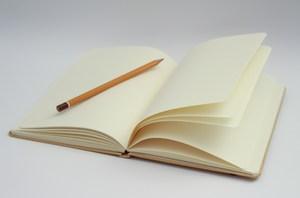Photo of an open journal.