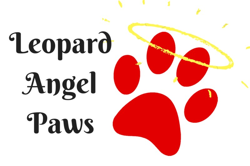 Paw Print for Leopard Angels