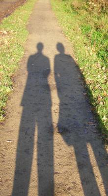 shadow_grass.jpg