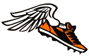 Running shoe with wing track logo