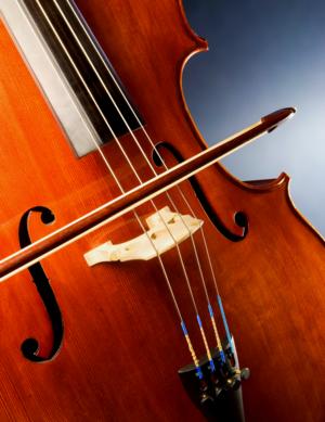 ViolinPicture1.png