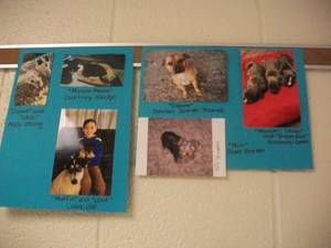 Pictures of Pilot students and staff members with their pets.