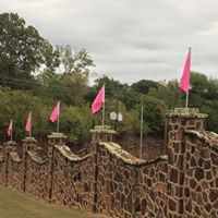 pink flags for cancer awareness