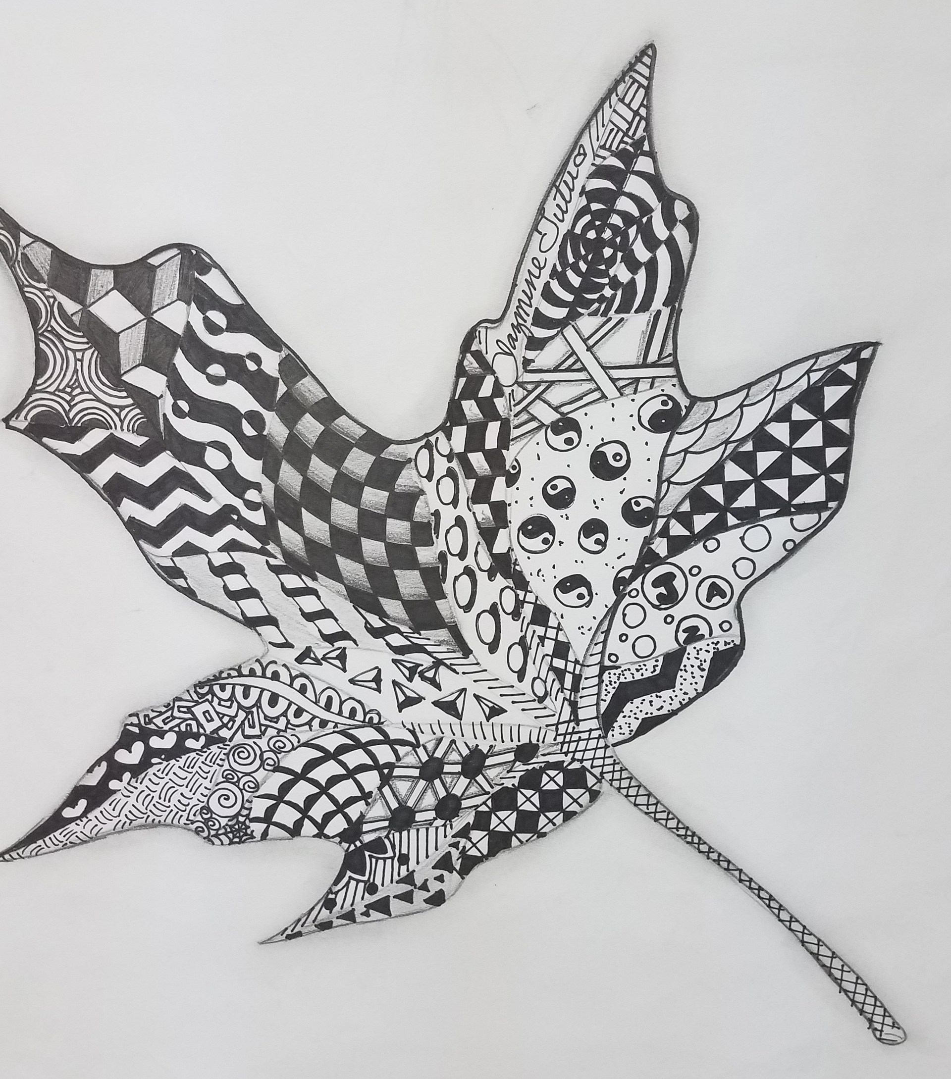 Zentangle Leaf design