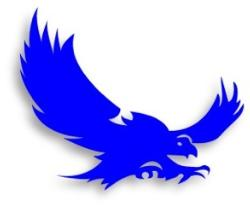 Falcon Flying logo blue.jpg