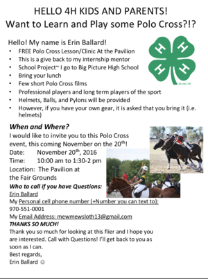 Screenshot of the poster for the polo clinic.