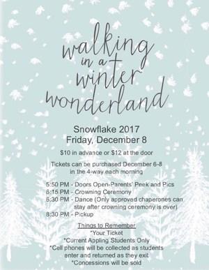 Snowflake2017.JPG