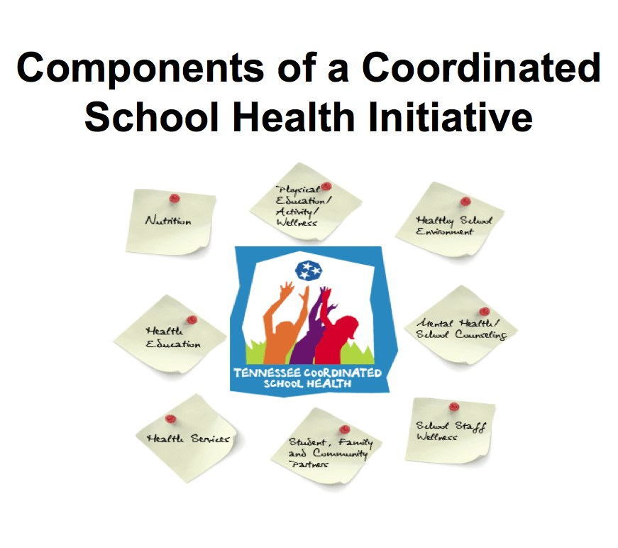 8 Components of CSH