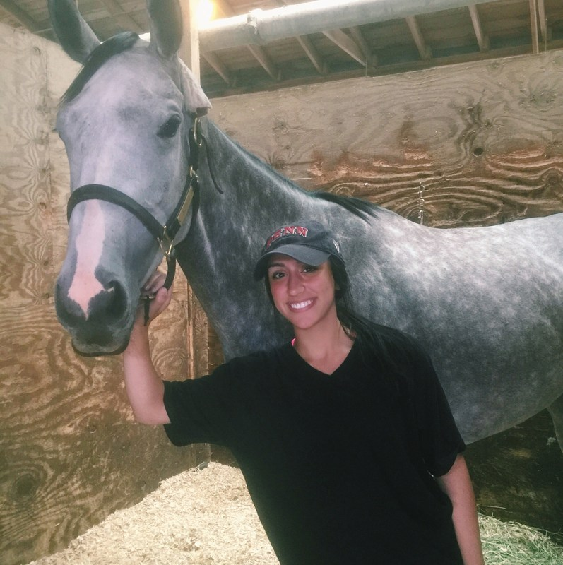 Mia Rocarro Interns at Equine Racetrack Featured Photo
