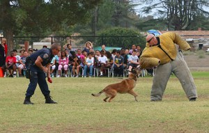 Boomba the K-9 and Officer Lee and Butler demonstrating how Boomba helps them.