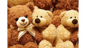 teddy-bears-725x493.jpg