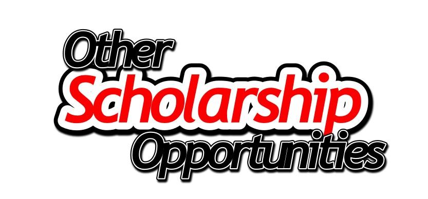 Other Scholarship Opportunities – Community – Punxsutawney