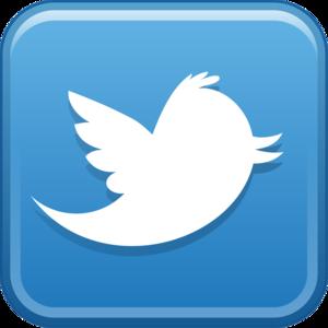 Twitter_Logo_Hd_Png_03.png