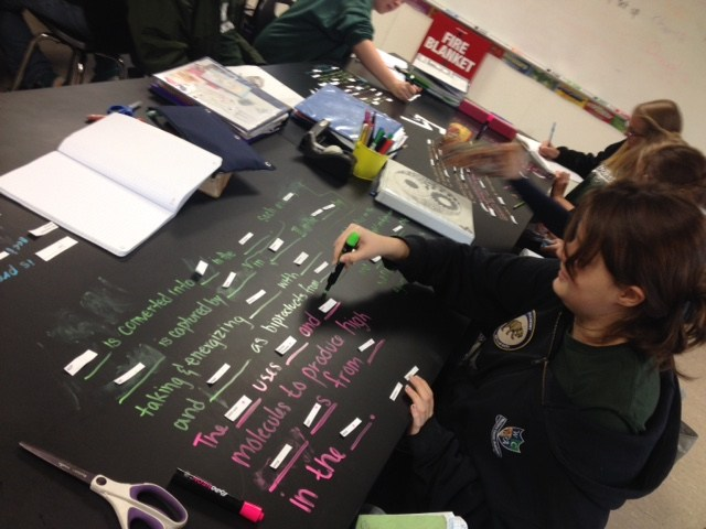 Today in class, the freshman were using new vocabulary related to the light dependent reactions of photosynthesis and the Calvin Cycle by writing sentences and making diagrams on the classroom tables.