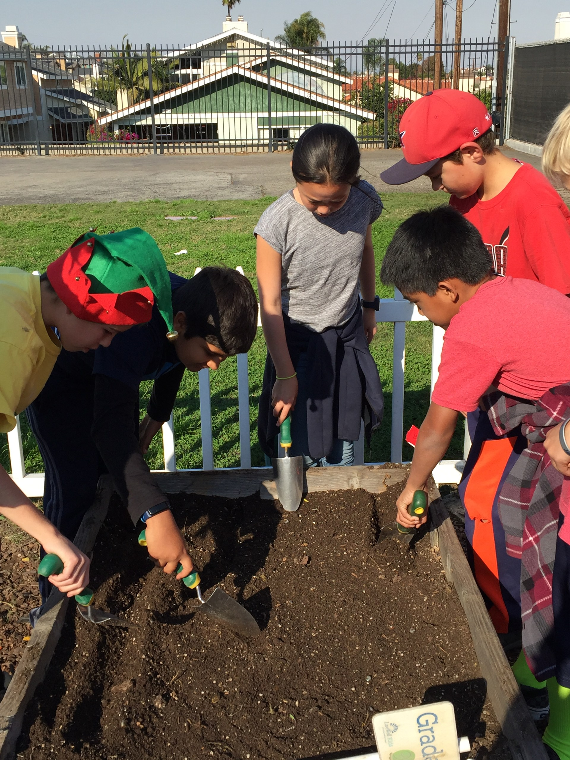 Four students gardening with tools.