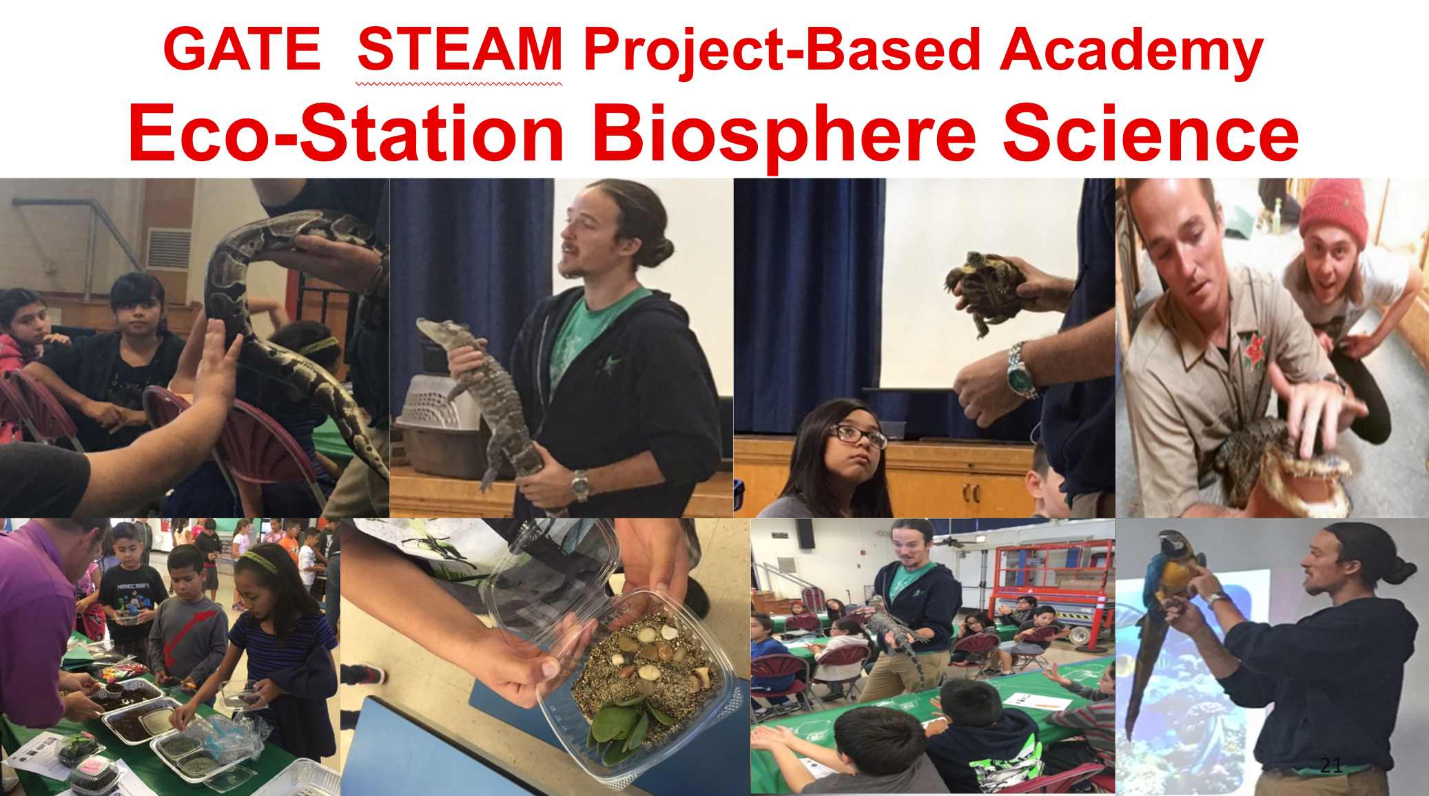 Project-based Academy showing eco-station biosphere science.