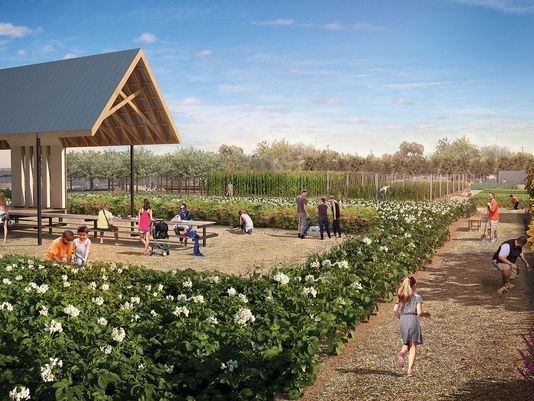 The City is currently taking public input on a new addition to Los Olivos Park off 28th Street and Indian School Rd. - their is a proposal to add an urban farm, market and education center on the west side of the park by Devonshire Senior Center.