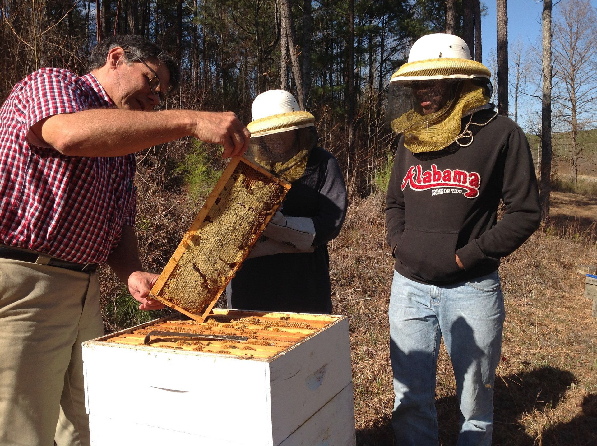 Agriscience students checking bee hives.