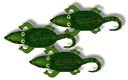 Three Gators