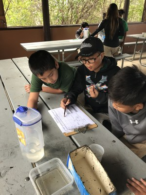 students conducting a run-off experiment, image 3