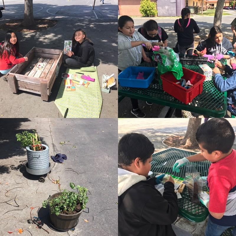 Gardening Club Thumbnail Image