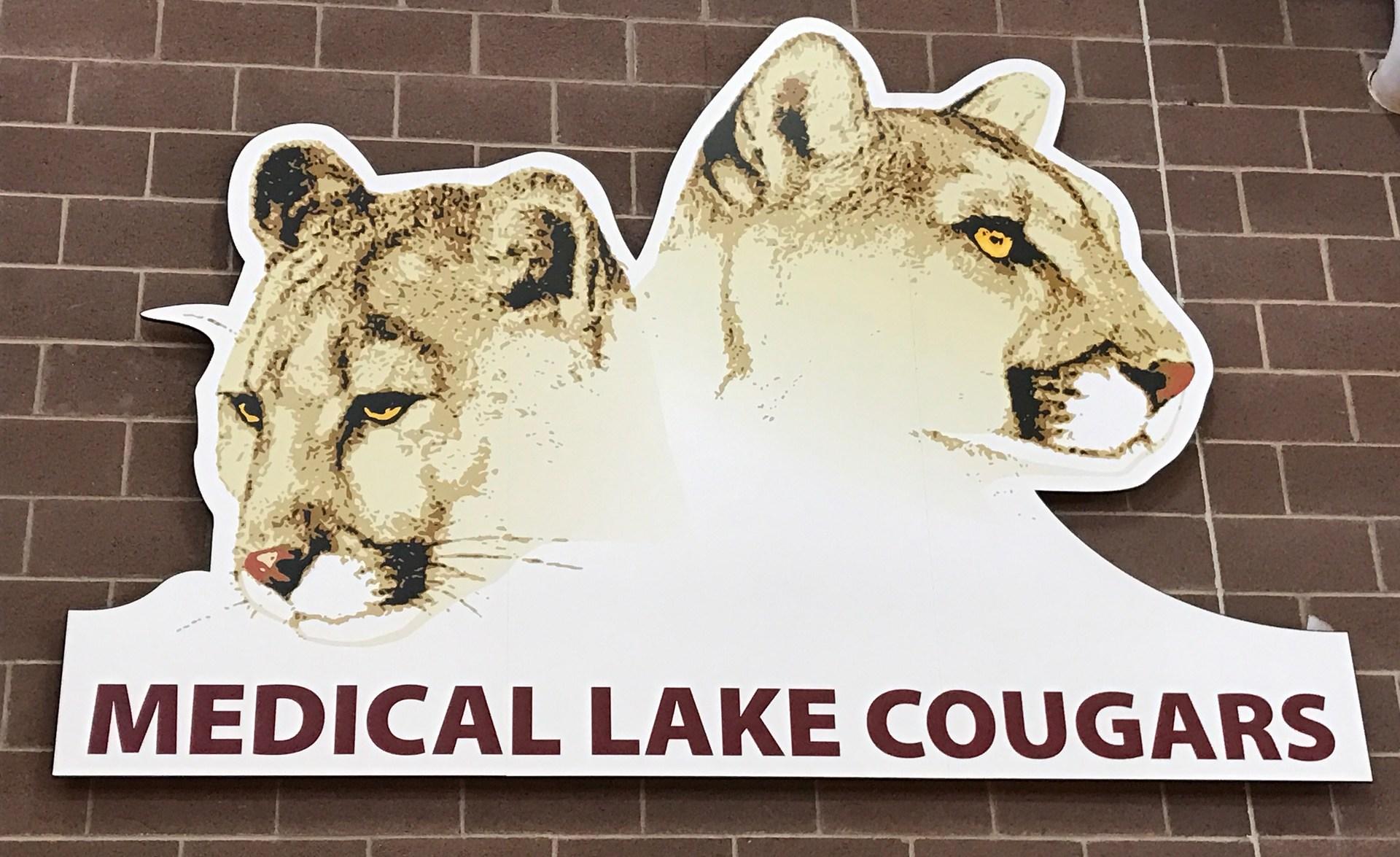Cougar sign