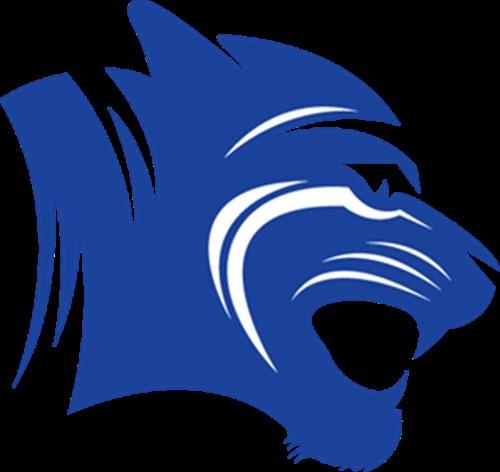 Blue Tiger head