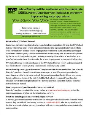 2017 NYC School Survey.jpg