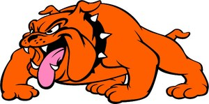 La Porte Junior High bullpup logo