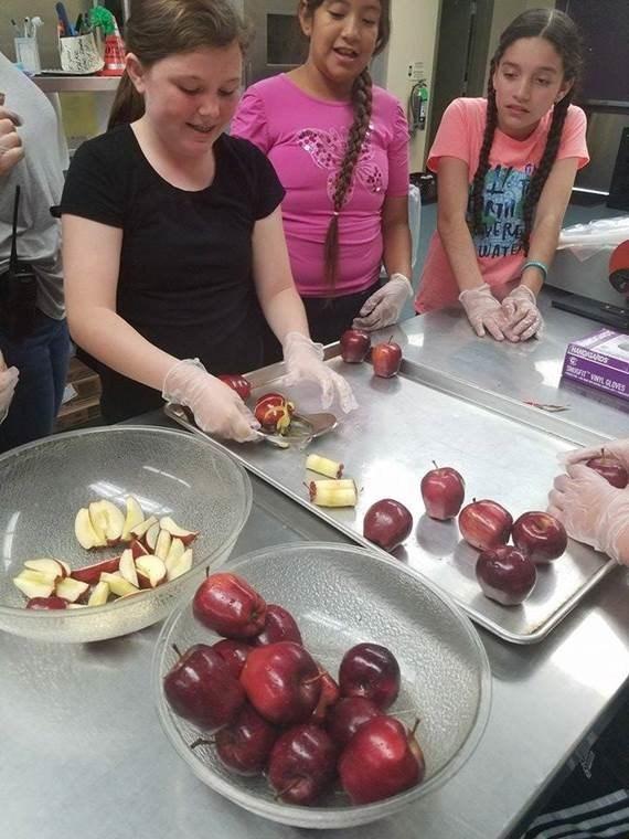 ASP Food Activity