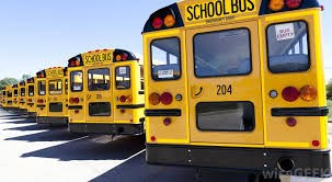 Bus Driver Training Planned Thumbnail Image