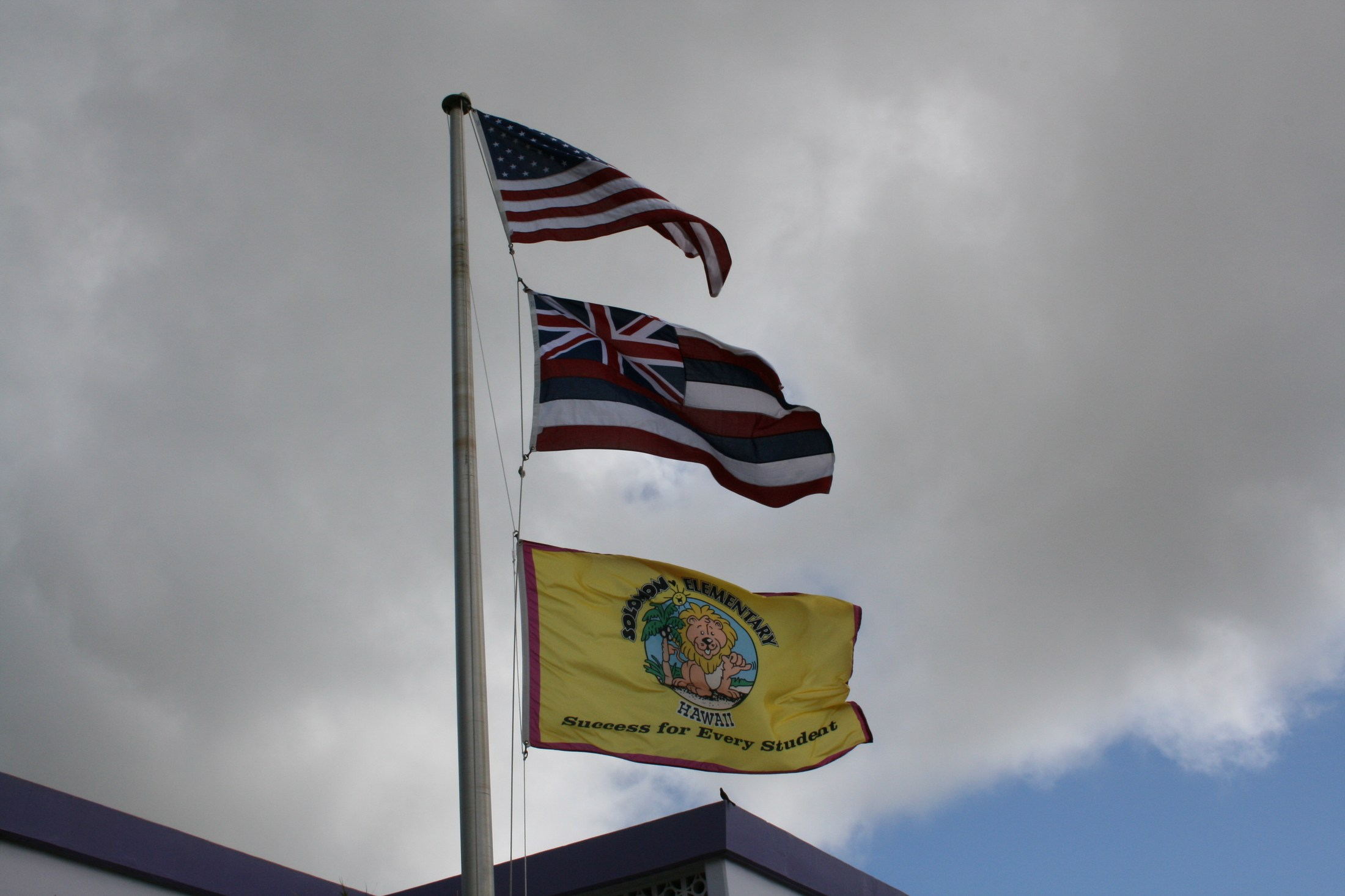 Solomon Flag Pole