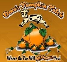 cow jumping over pumpkins