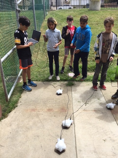 A group of boys program their robots.