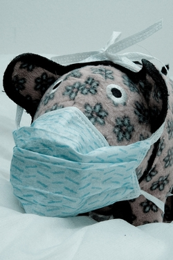 swine flu.jpg