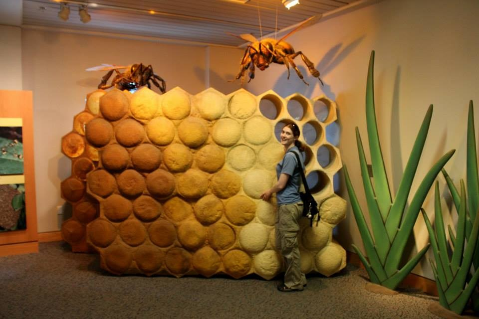 I was shrunk down for honeybee research purposes.
