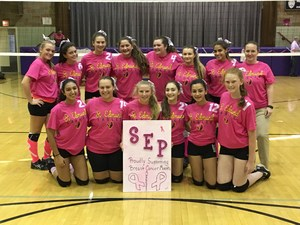 2017 Dig Pink Campaign