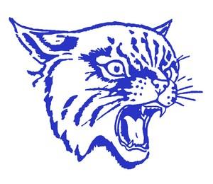 Wildcats_head.jpg