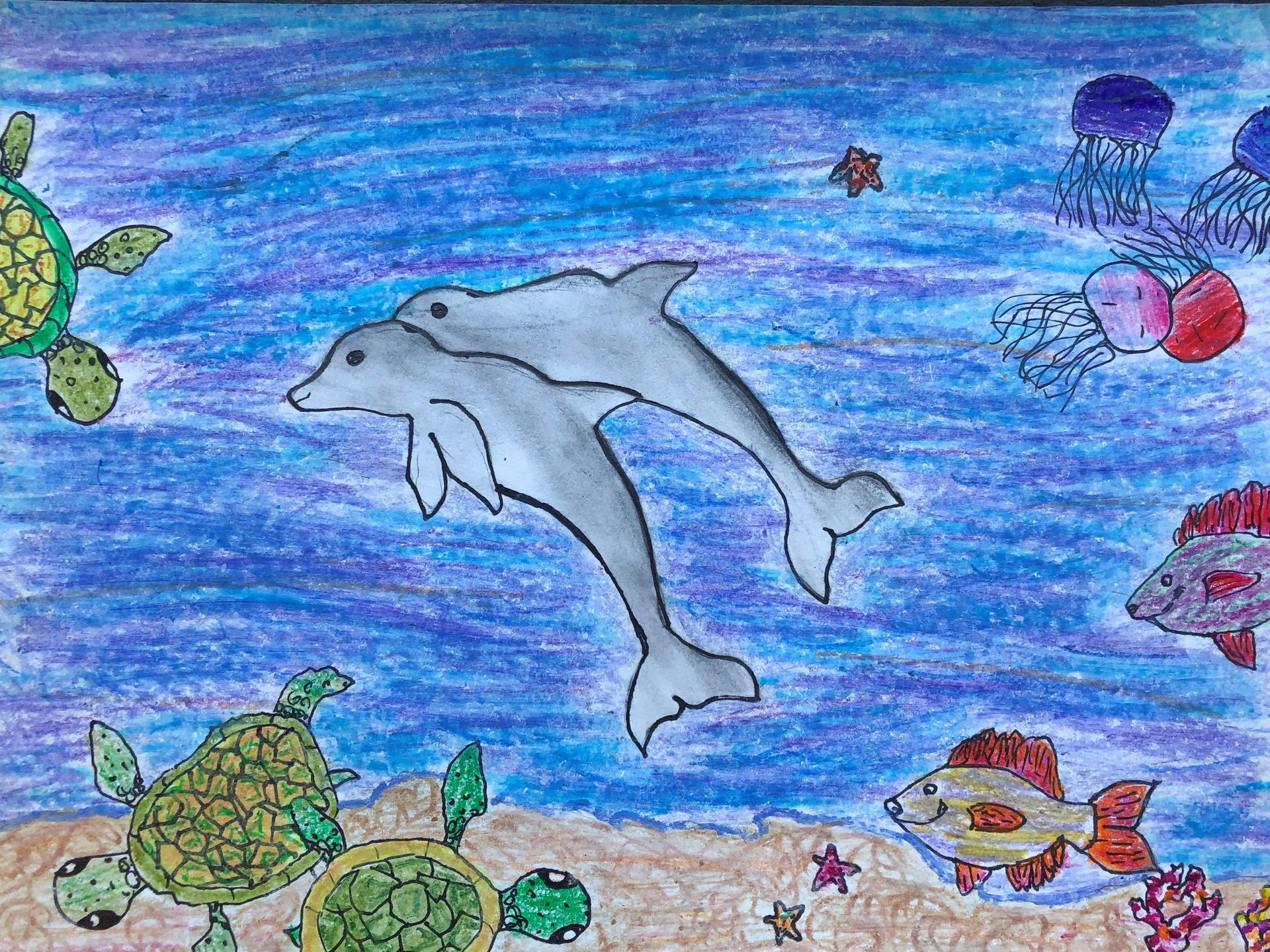 dolphin painitng