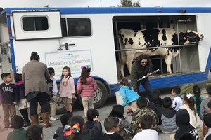 Students watching a Dairy Presentation