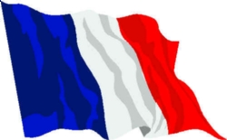 french-flag_1_.jpg