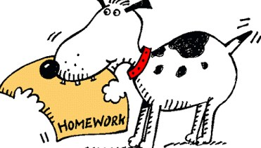 Homework Website Link