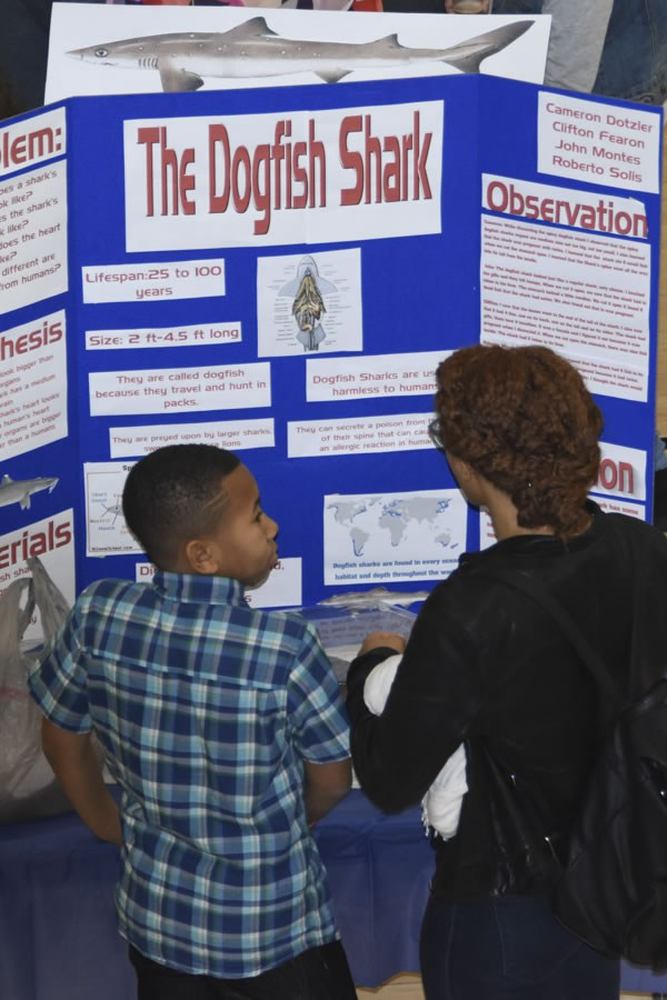 Students discussing the science project