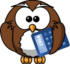 Owl with Calculator