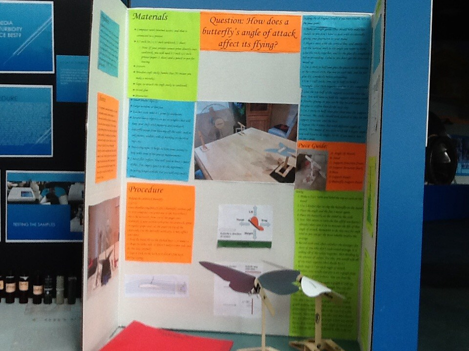 Photos of WCA Science Fair projects